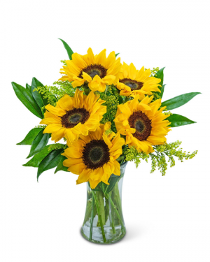 Sprinkle of Sunflowers Flower Arrangement in Nevada, IA   Flower Bed