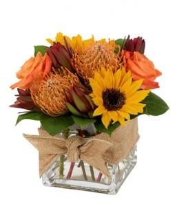 Square Protea Fall Flowers