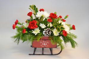 St. Nick's Sleigh Fresh Arrangement in Holland, MI | GLENDA'S LAKEWOOD FLOWERS