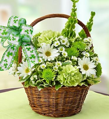 St. Patrick's Day Flower Basket '17 Arrangement