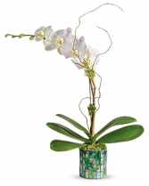 Stained Glass Orchid SOLD OUT