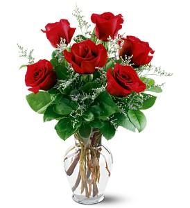 Standard Half Dozen Red Rose  Arrangement
