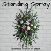 Standing Spray