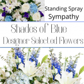 Standing Spray Blue