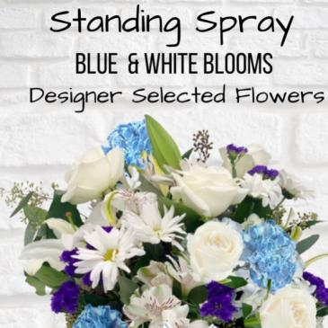 Standing Spray-Blue & White