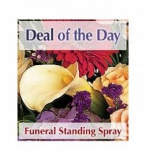 standing spray  designer choice