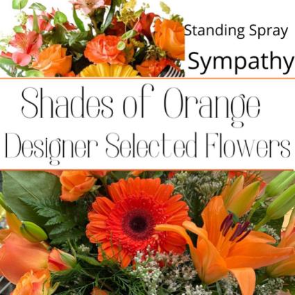 Standing Spray Orange