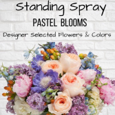 Standing Spray-Pastel