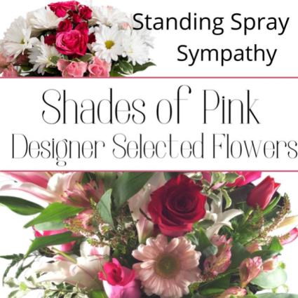 Standing Spray Pink