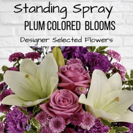 Standing Spray-Plum
