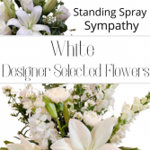 Standing Spray White