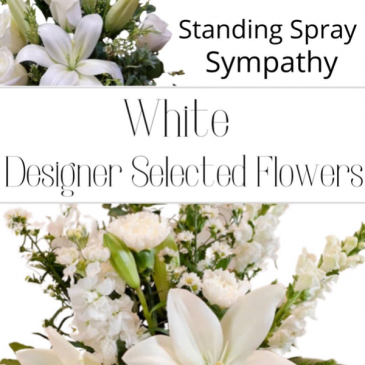 Standing Spray White