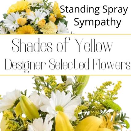 Standing Spray Yellow
