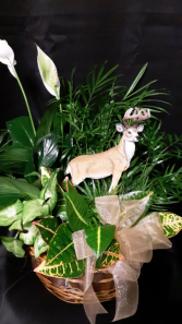 Standing Tall planter with Deer statue