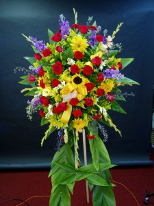 Star Burst Spray/Corona in Hialeah, FL | JACK THE FLORIST