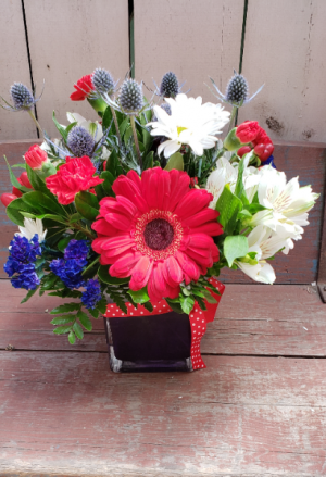 Star Spangled Blooms Cube arrangement  in Whitehall, MI | WHITE LAKE GREENHOUSES FLORAL