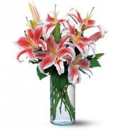 Majestic  Stargazer lilies