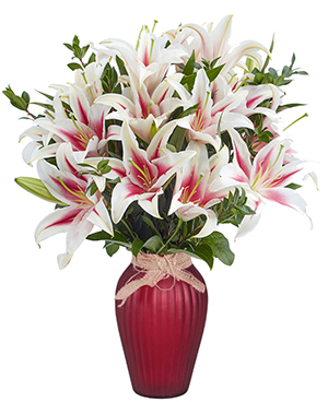 Stargazer Vase Enjoy the fragrance of Lilies and more Lilies!  in Clearwater, FL | FLOWERAMA
