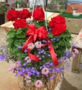 Stars and Stripes Basket Hanging Basket