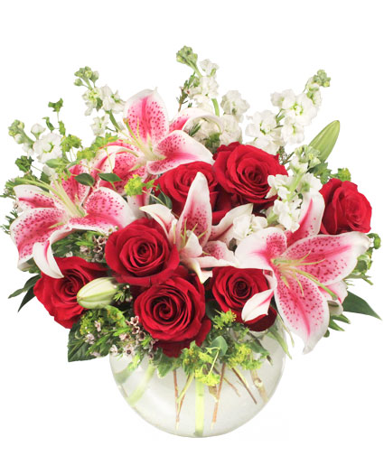 Starts in the heart flower arrangement in coral springs fl starts in the heart flower arrangement mightylinksfo