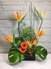 Staycation in Paradise  Tropical arrangement