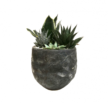 The Stone Grey Succulent Planter