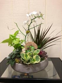 Stone Planter Mixed Plants