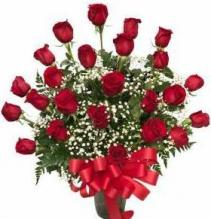 Stop in the Name of Love 24 Long Stem Roses Arrangement