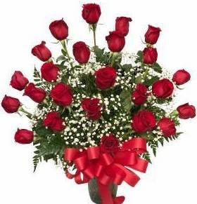 Stop in the Name of Love 24 Long Stem Roses Arrangement
