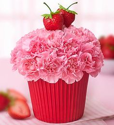 Strawberry Cupcake Birthday/Everyday in Elyria, OH | PUFFER'S FLORAL SHOPPE, INC.