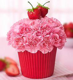 Strawberry Cupcake Birthday/Everyday