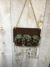 String of Hearts Plants In Wall Hanger