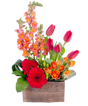 Strong & Gentle Flower Arrangement in Nevada, IA | Flower Bed