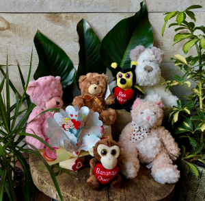 Stuffed Animals  in Toronto, ON | THE NEW LEAF FLOWERS & GIFTS