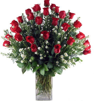 Stunning 3 Dozen Roses Red Rose Arrangement