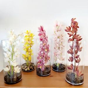 Stunning Cymbidium Orchids Cymbidium Vase in Warman, SK | QUINN & KIM'S FLOWERS