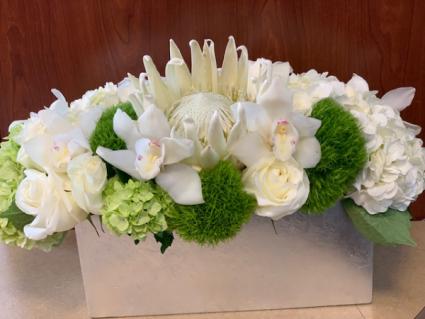 Stunning in White (Premium)
