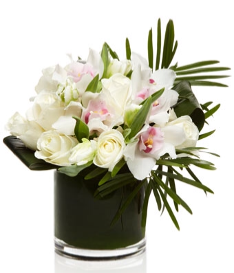Stunning Roses & Orchids