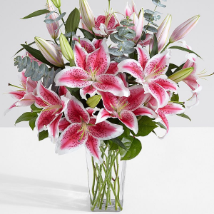 Stunning Stargazers  in Allen, TX | Lovejoy Flower and Gift Shop