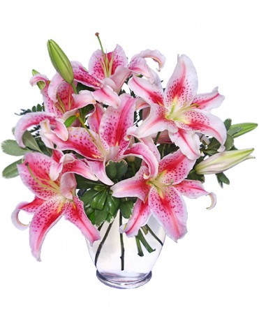 STUNNING STARGAZERS  Arrangement