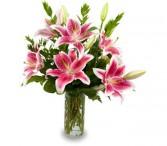 STUNNING STARGAZERS Vase of Lilies
