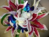 Stunning Stargazors Bridal Bouquet