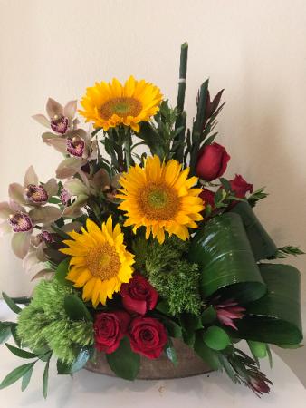 Stunning Sunflowers