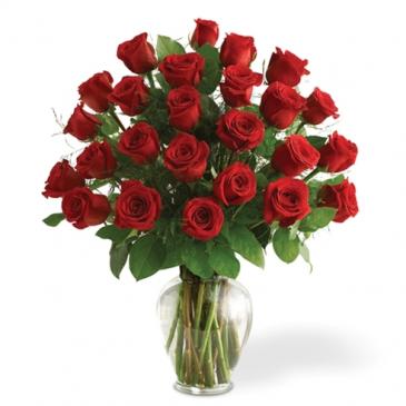 Stunning Two Dozen Valentine's Day