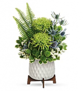 Style Statement - 586 Arrangement