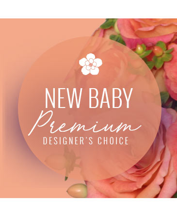 Stylish New Baby Premium Designer's Choice