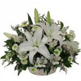 Sublime Lillies Funeral Flowers