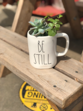 Be Still Succulent Coffee Cup