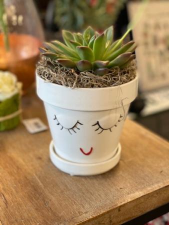 Succulent Face