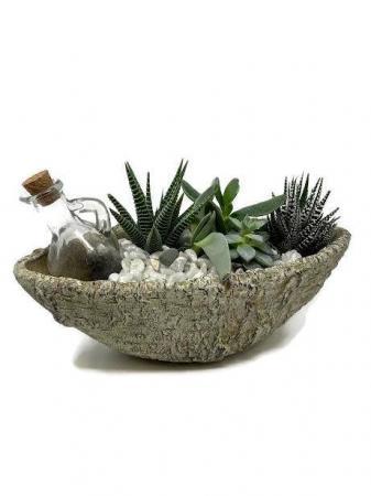 Succulent Garden - Boat